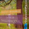 """Las Bases del Transgeneracional - Saul Perez Aprende cómo funciona el Transgeneracional de una forma sencilla, clara y a tu ritmo. """"Conocer nuestro árbol genealógico es como abrir nuestro inconsciente y comprender cómo estamos funcionando, para así poder aportar recursos y conciencia que nos ayuden a vivir la vida que deseamos."""""""